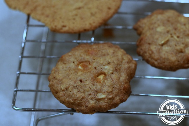 5-deliciously-chewy-cookie-recipes-e