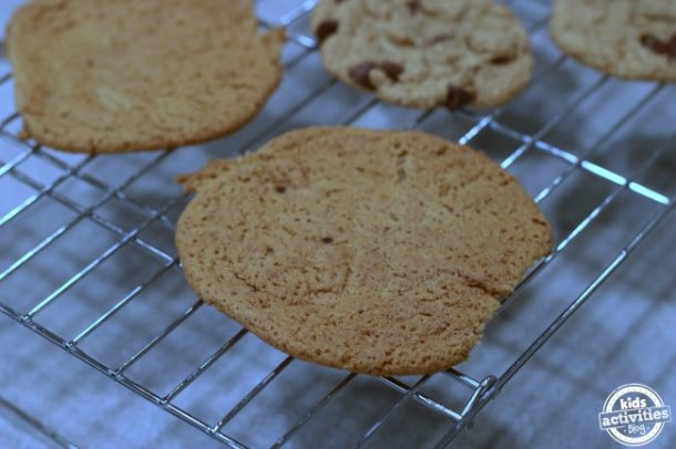 5 Deliciously Chewy Cookie Recipes