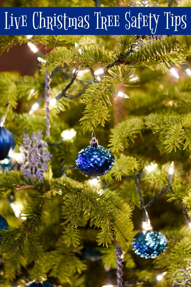 live-christmas-tree-safety-tips