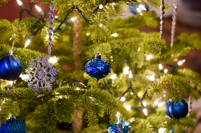live-christmas-tree-safety-tips2