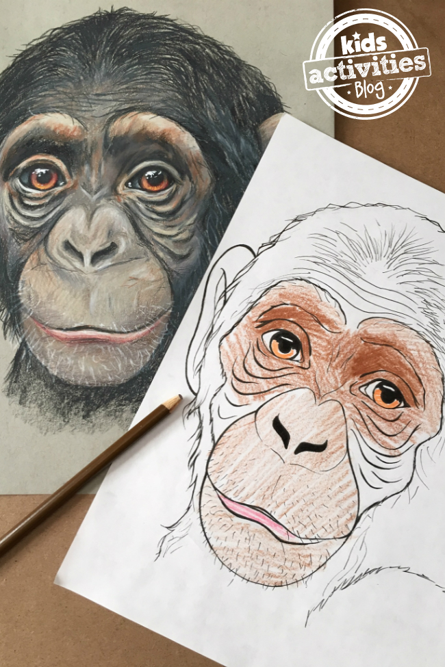 Chimpanzee Coloring Pages for Kids