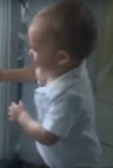 Baby Can't Stop Laughing At These Dogs Playing Peek-A-Boo