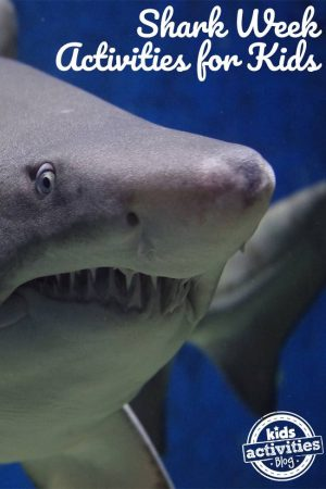 KAB Shark Week Activities for Kids