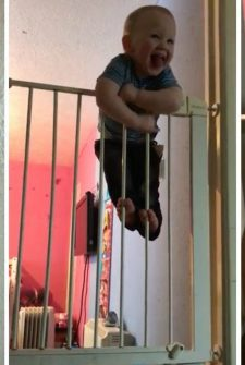 Houdini Baby Escapes Over TALL Straight Gates!!