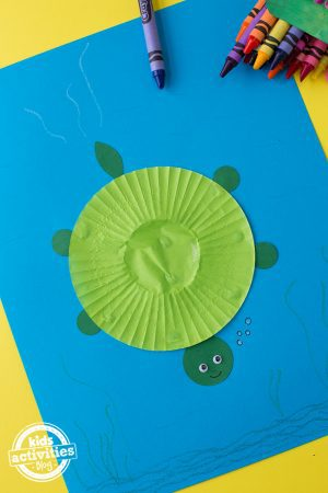 Cupcake Liner Turtle