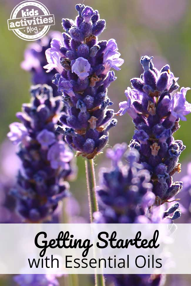 Get Started Using Essential Oils (What You Need)
