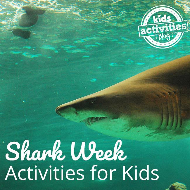 Get Ready for Shark Week with Activities for Kids