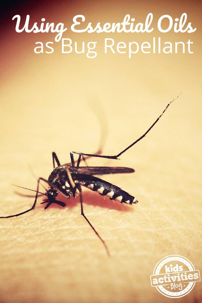 Essential oils to keep outdoor bugs away - Keep mites away backyard hiking ...