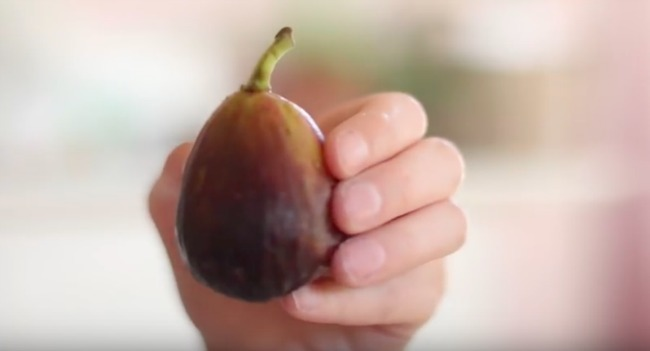 fig held by a hand