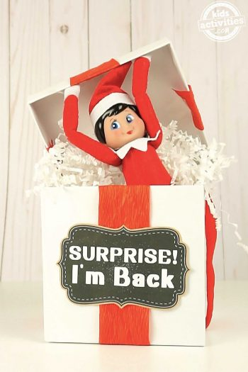 Elf on the Shelf Surprise Box
