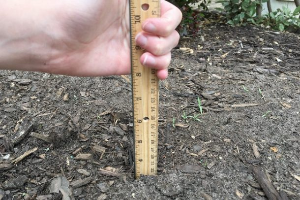 Sylvan Nation garden math ruler