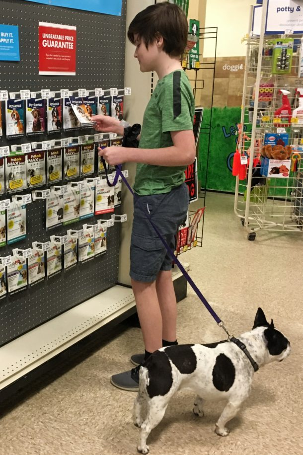 Panda and Rhett at PetSmart Choosing PetArmor Plus