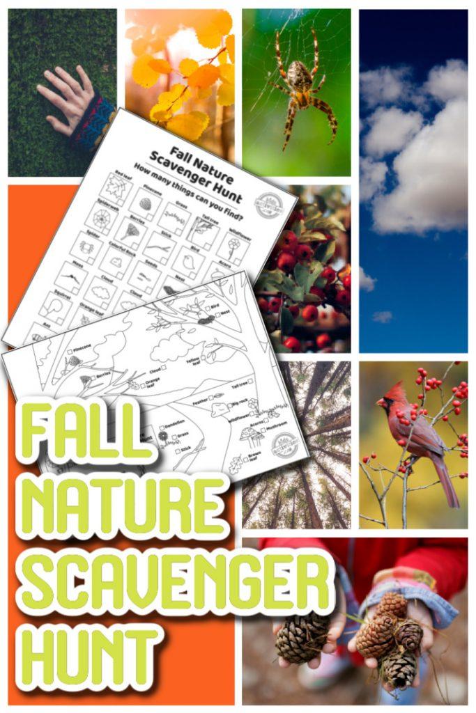 Fall Nature Scavenger Hunt for Kids - Printable scavenger hunt to find items in nature - Kids Activities Blog