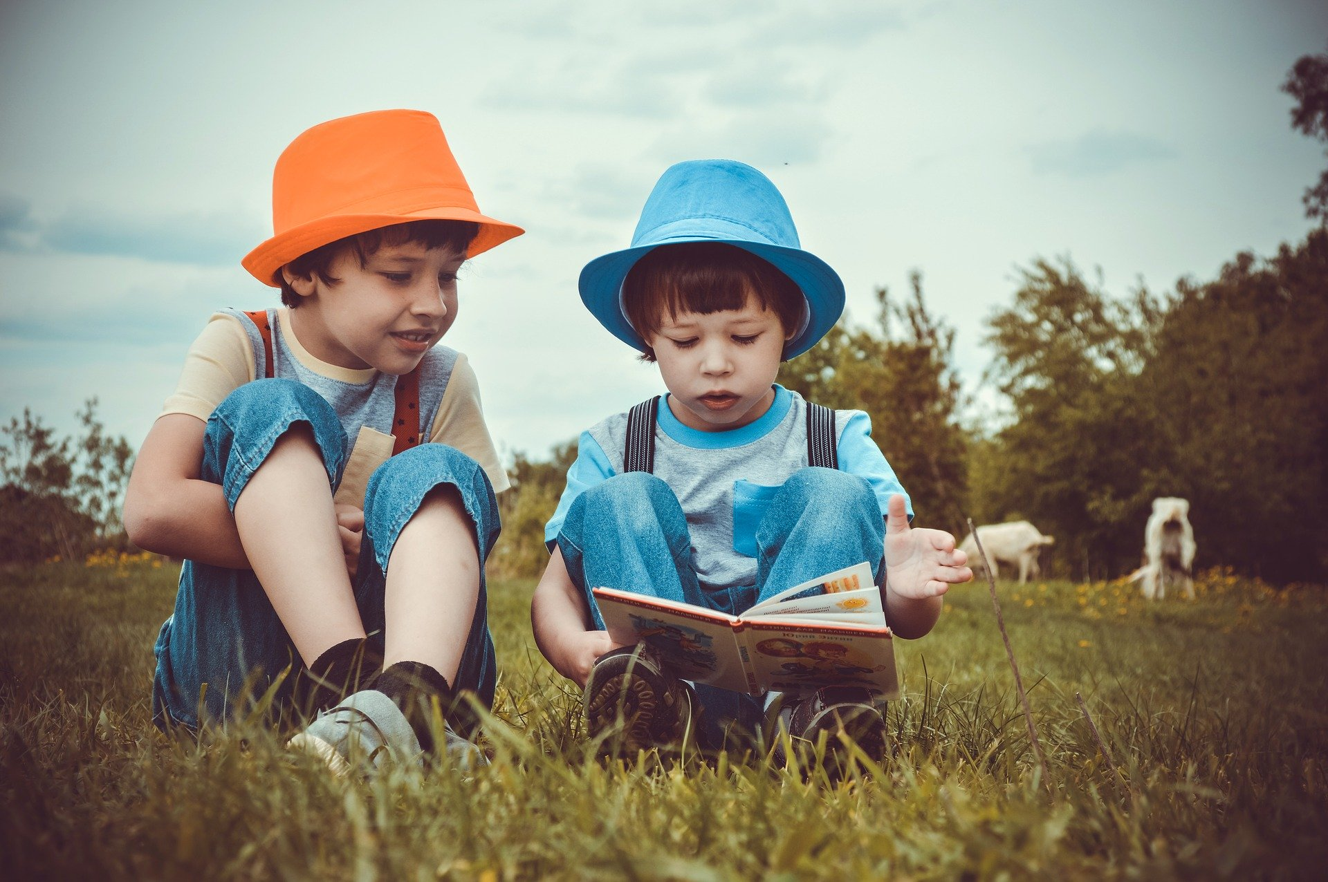 boys reading a book together outside - Dolly Parton's Imagination Library provides books to kids