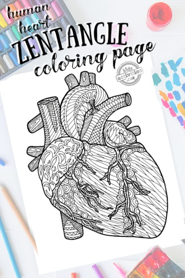 intricate heart zentangle pattern art ready to be colored with mixed art supplies and bright colors