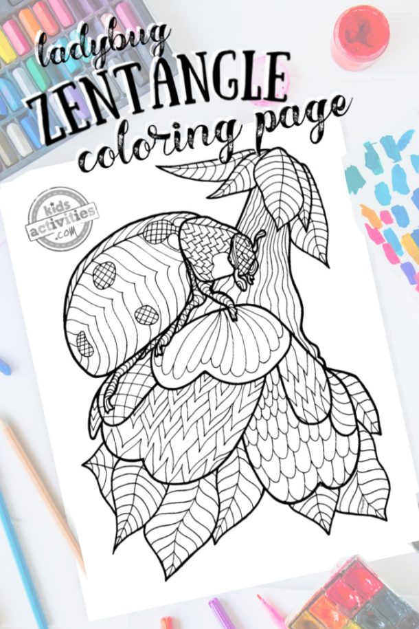 intricate ladybug zentangle pattern art ready to be colored with mixed art supplies and bright colors