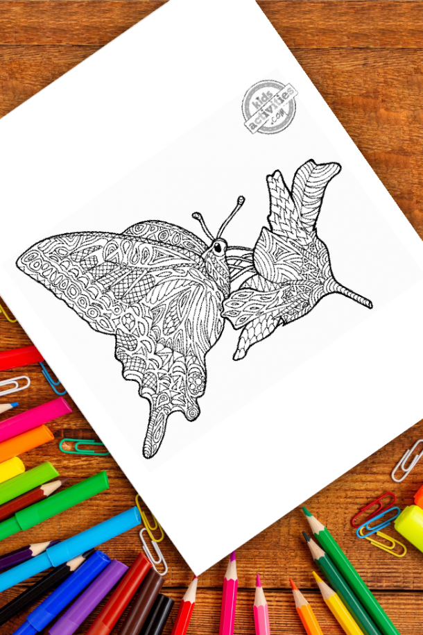 intricate butterfly zentangle pattern art ready to be colored with mixed art supplies and bright colors