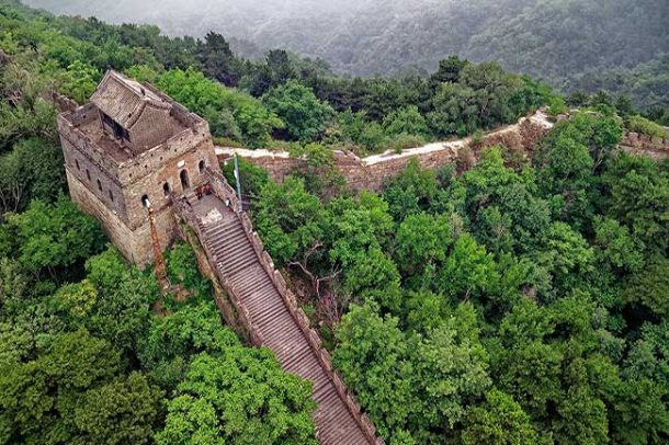 Part of the Great Wall of China with lots of concrete stairs, all surrounded by lush forests of green trees.
