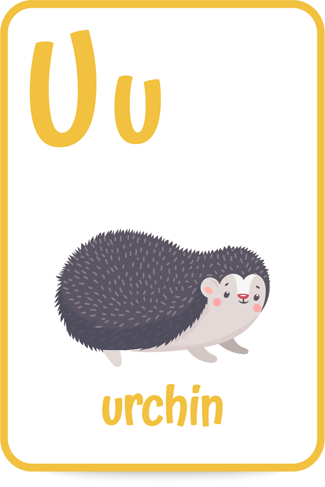 Words that start with the letter U like urchin