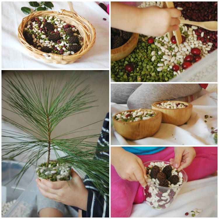 Christmas sensory bin ideas from Paper and Glue that uses all natural items for the tub