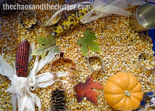 fall sensory bin idea from the Chaos and the Clutter