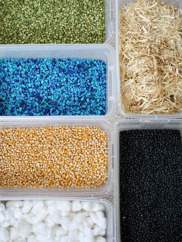 sensory bin for farm theme from Fantastic Fun and Learning