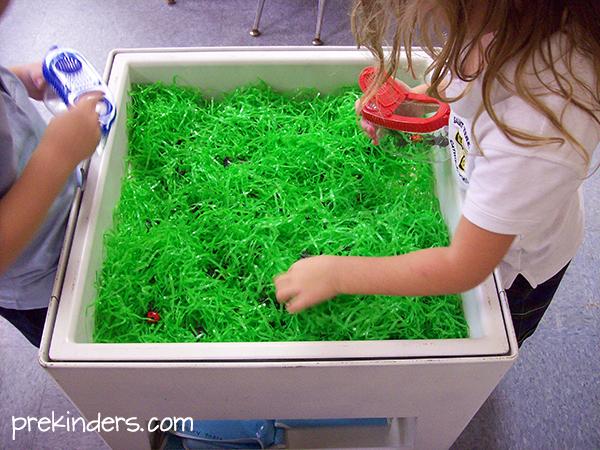 Pre Kinders grass bug sensory table for kids