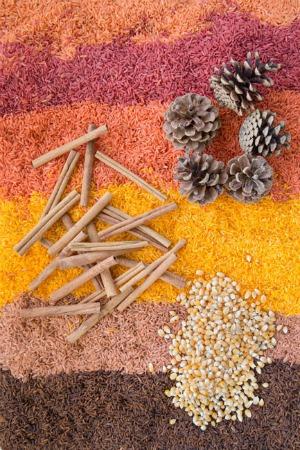 Dye Rice for Sensory Bins