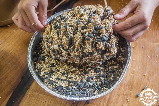 artisanat de mangeoire à oiseaux en forme de pomme de pin pour les enfants - un bon artisanat d'automne pour les enfants de tous âges